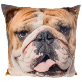 Visage Cushion Bulldog