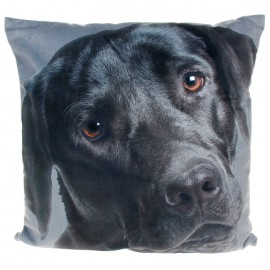 Visage Cushion Labrador