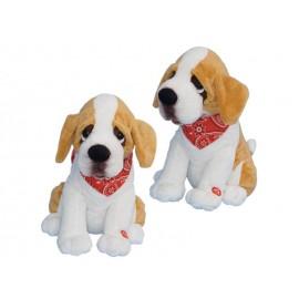 Σκύλος Που Τραγουδάει Και Χορεύει- Άγιος Βαλεντίνος
