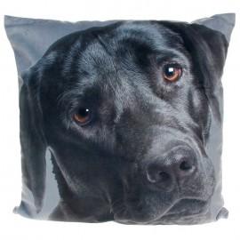 Μαξιλάρια Με Σκυλάκια- Λαμπραντόρ